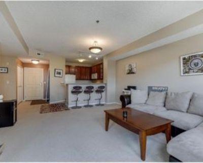 615 N 1st St #300, Minneapolis, MN 55401 2 Bedroom Condo