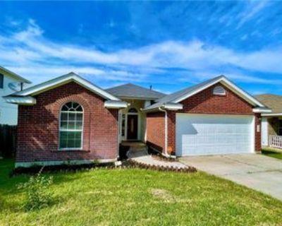 15210 Wideleaf Cv, Austin, TX 78724 3 Bedroom House