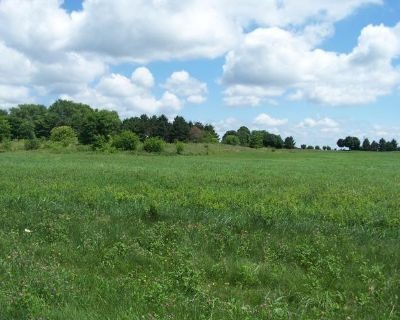 Plot For Sale In Ringwood, Illinois
