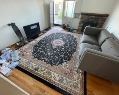 Black and Ivory Traditional Oriental Rug  (9'x12')