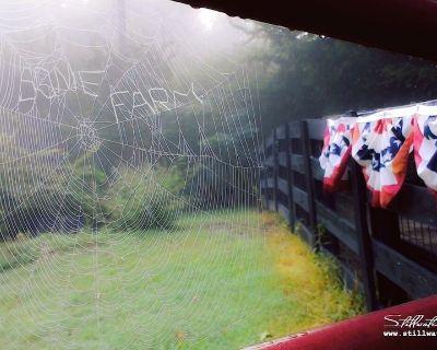 Henderson, TN Cottage Farmstay E-I-E-I-Oh, MY! - Henderson