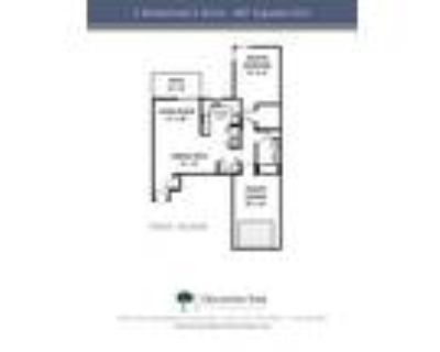 Oklahoma Park Townhomes - 1 Bedroom, 1 Bath Lower Townhome
