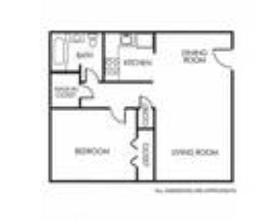 Apollo Apartments - 1A Floor Plan