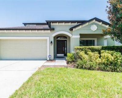 7950 Camden Woods Dr, Tampa, FL 33619 4 Bedroom Apartment