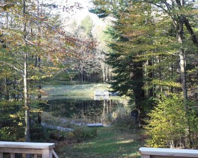 Becket Contemporary Cottage in the Woods Overlooking a Private Spring Fed Pond - Becket