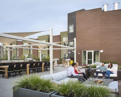 New Listing! Studio! Steps to Downtown Walnut Creek | Rooftop Pool - Walnut Creek